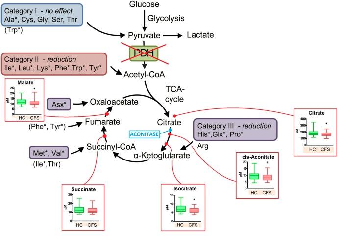metabolism-7