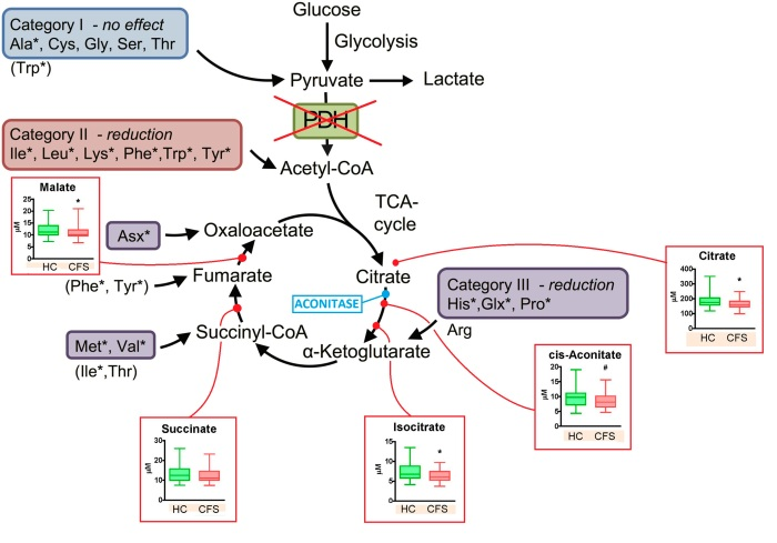 A comparison between four studies on energy metabolism inME/CFS
