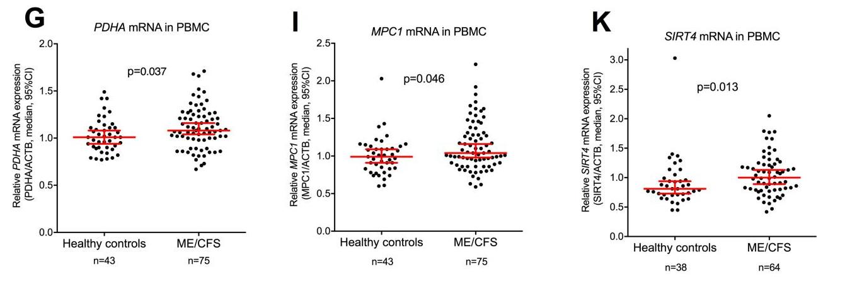 PDHA, MCP1, SIRT4.png