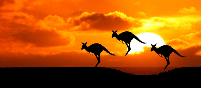 Geni australiani