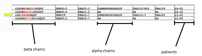 TCR epitope